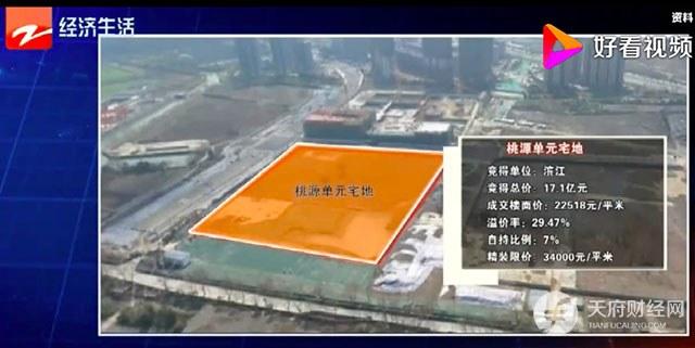 戚金兴自揭滨江地产发展困境 未否认卖身国企的可能